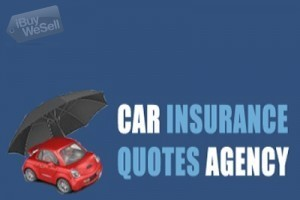 Evolve Cheap Car insurance Chicago : Auto Insurance Chicago