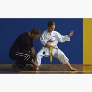 Four Weeks of Unlimited Martial Arts Classes at Integrity Martial Arts (57% Off)