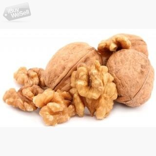 Nuts Pack a Punch, Munch them sure for Sound Health