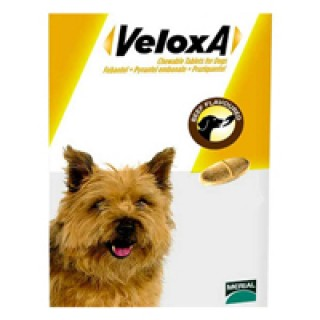 Veloxa Chewable Tablets for Dogs 2 PACK