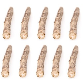 10 Pcs Natural Cat Catnip Sticks