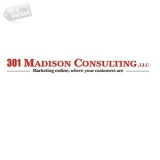 301 Madison Consulting, LLC
