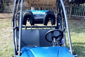 ADULT SIZED HAMMERHEAD BUGGY WITH THE TITLE EXCELLENT CONDITION