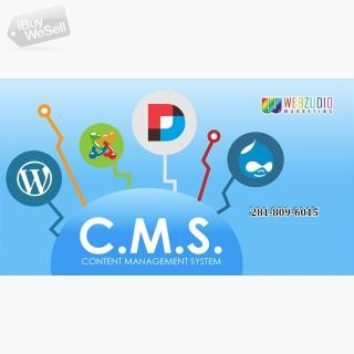 CMS development Service Houston