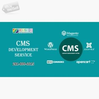 CMS development Service TX