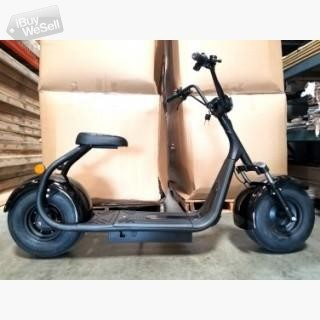 Citycoco 18AH 16V electric scooter 2000W
