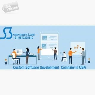 Custom Software Development Company USA