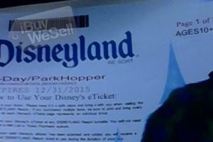 Disneyland park hoopers tickets