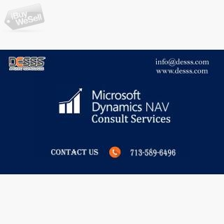 Dymanic nav consultant houston