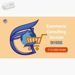 Ecommerce Consulting houston