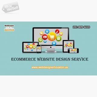 Ecommerce Website Design service houston