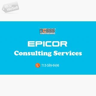 Epicor Consulting Houston