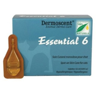 Essential 6 For Cats 12 MONTHS