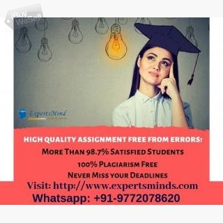 Expertsminds-Complete Assignment Help Services