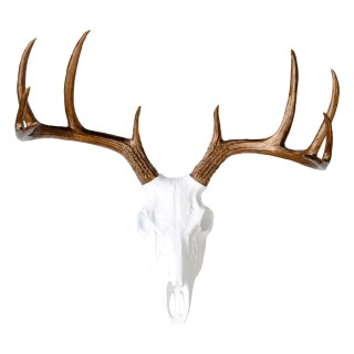 Faux Taxidermy - White Deer Skull - Bronze Antlers - Wall Mount Bs0109