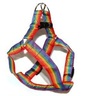 Gay Pride Rainbow Pet Harness (Cats / Small Dogs) - LGBT Gay and Censored Pride Pet Accessories