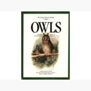 Owls (Natural History Museum Collection)