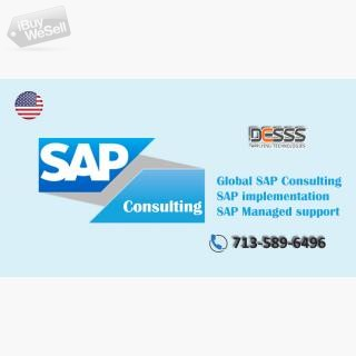 SAP consulting services houston