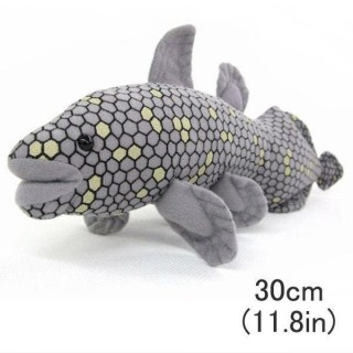 Sea Creature Coelacanth Realistic Plush Doll (Plush Doll / 30cm)