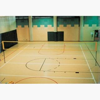 Spectrum Outdoor Volleyball System USA