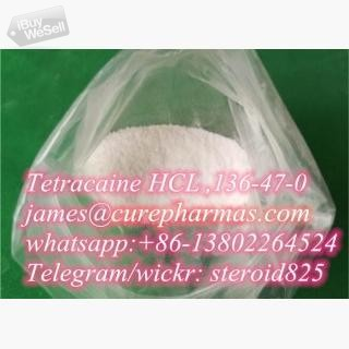 Tetracaine Hcl powder Tetracaine CAS.136-47-0 no customs issues