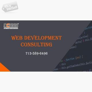 Web Development Consulting houston