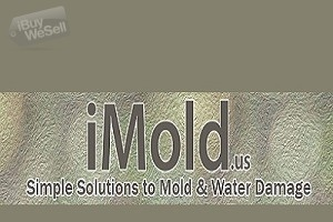 iMold US Water Damage & Mold Removal Service Naples